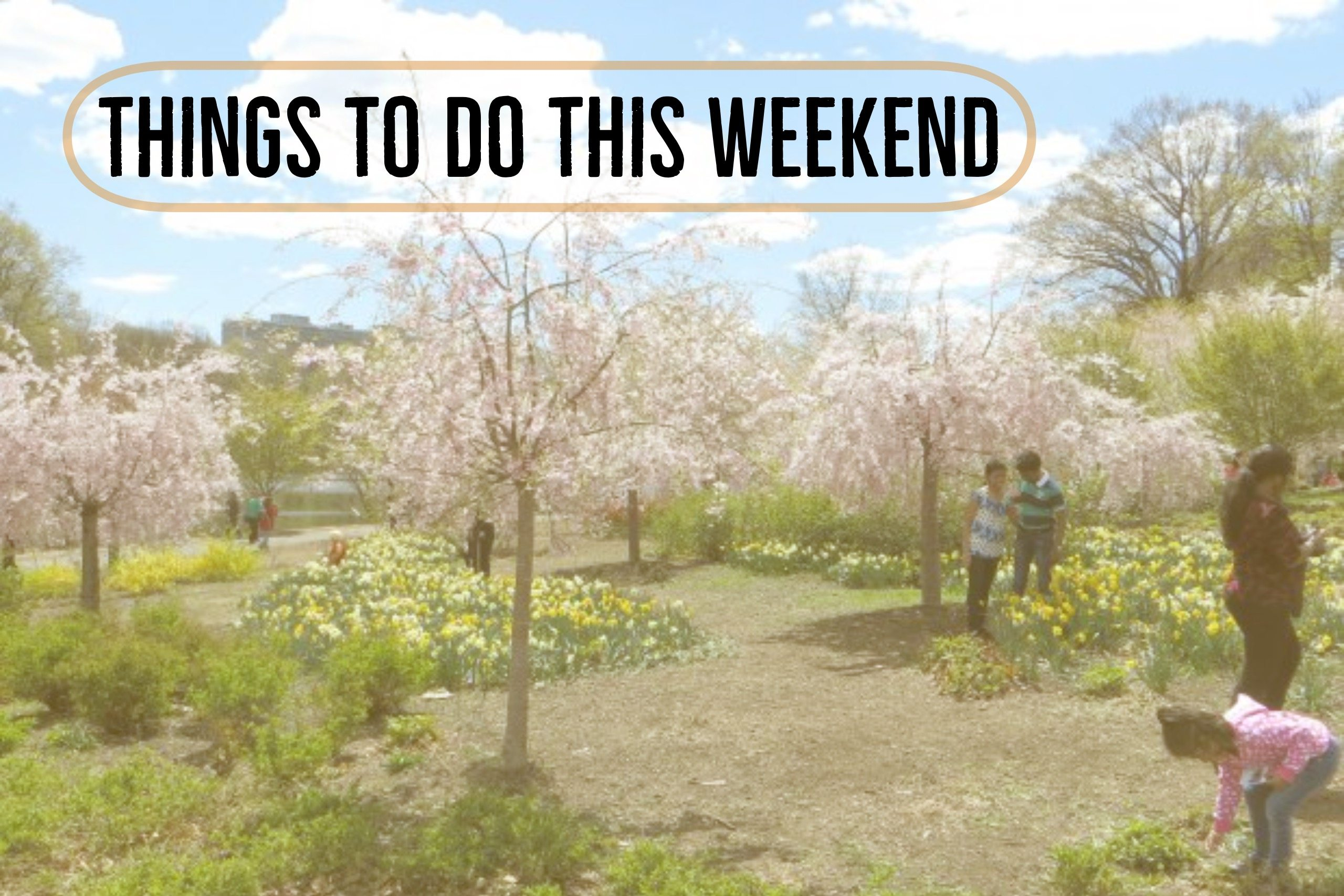 Things To Do This Weekend – April 14 – 16