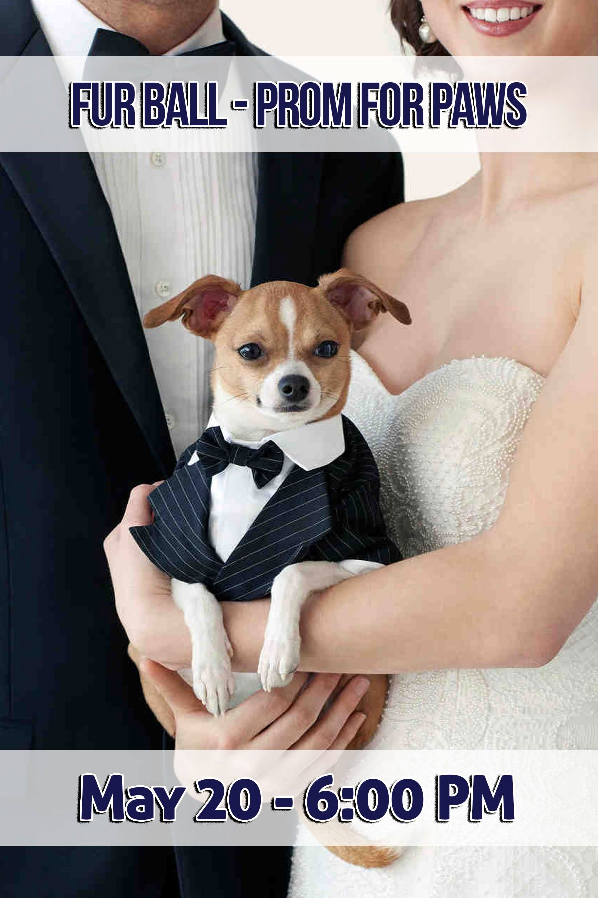 Fur Ball – Prom for Paws